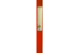 Forever Exabox (A4) Recycled 40mm Spine 0.7mm Thickness Polypropylene Filing Box (Orange)