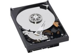 Western Digital WD AV 500GB SATA 6Gb/s 64MB 3.5 inch Hard Drive (Internal)