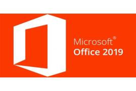 Microsoft Office Home and Student 2019 English Eurozone 1 License Medialess